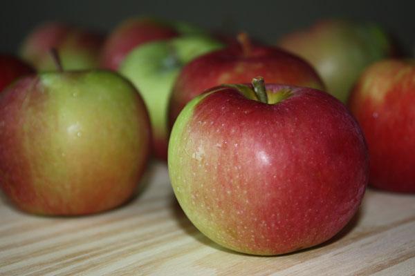 Apples and dessert