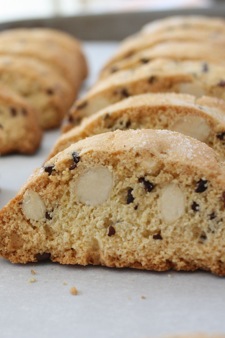 Almondbiscotti withcocoa nibs lined up on sheet pan.