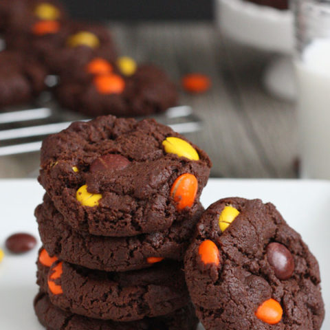 These Reese's Pieces double chocolate cookies are bursting with chocolate flavor and loaded with bits of peanut butter.