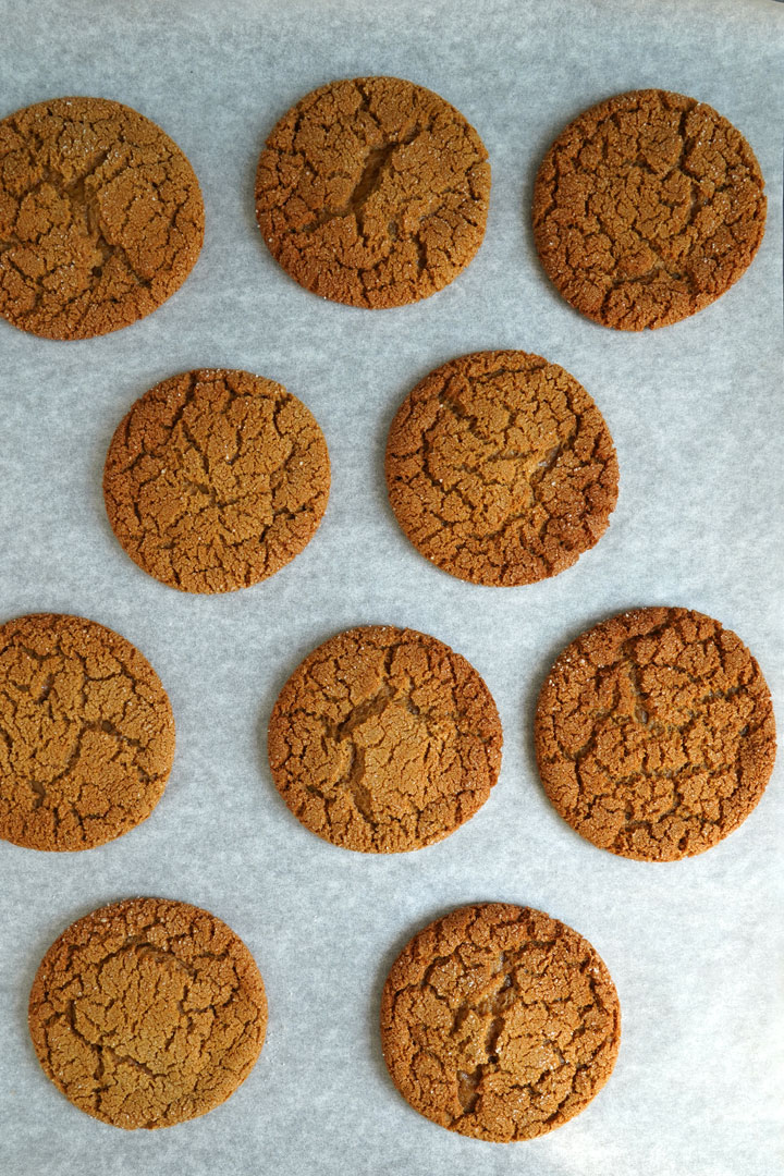 Top view of baked gingersnap cookies on cookie sheet.