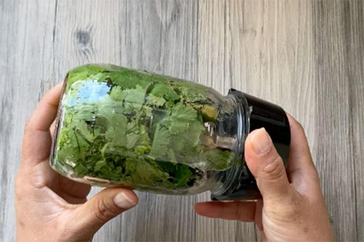 Cilantro mint chutney ingredients in a blender jar.